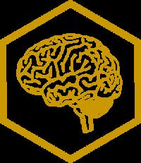 Brain-hexaF